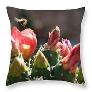 Bee On Cactus In Croatia Throw Pillow