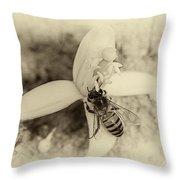 Bee On Citrus Flower Throw Pillow