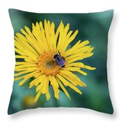 Bee On Curlyhead Goldenweed Throw Pillow