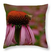 Bee On Echinacea Throw Pillow