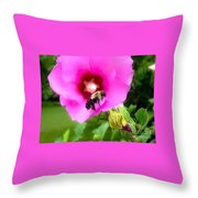 Bee On Edge Of A Hibiscus Flower Throw Pillow