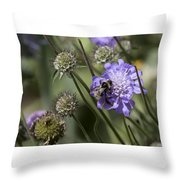 Bee On Flower 4. Throw Pillow