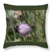 Bee On Flower 5. Throw Pillow