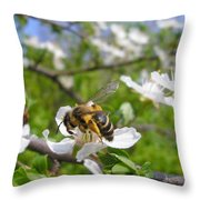 Bee On Flower On Tree Branch Throw Pillow