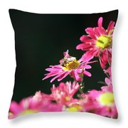Bee On Flower Spring Scene Throw Pillow