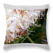 Bee On Flowers 1 Throw Pillow