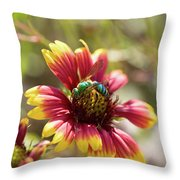 Bee On Gaillardia Throw Pillow