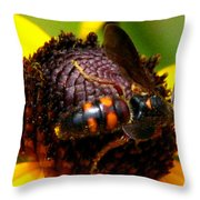 Bee On Lazy Susan 4 Throw Pillow
