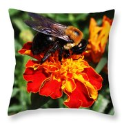 Bee On Marigold Throw Pillow by William Selander