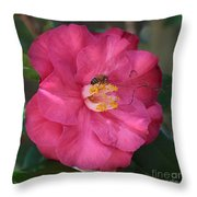 Bee On Pink Camellia Throw Pillow