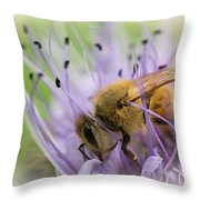 Bee On Purple Throw Pillow