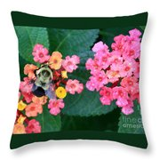 Bee On Rainy Flowers Throw Pillow