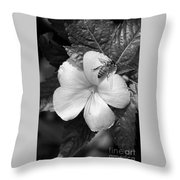 Bee On The Edge Throw Pillow
