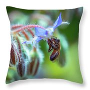 Bee On The Flower 2 Throw Pillow