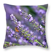 Bee On The Lavender Throw Pillow