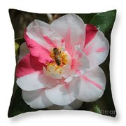 Bee On White And Pink Camellia Throw Pillow