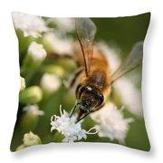 Bee On White Throw Pillow