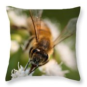 Bee On White Vertical Throw Pillow