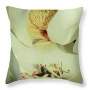 Bee Pollen Overdose Throw Pillow