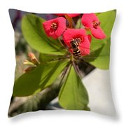 Bee Red Rose Throw Pillow