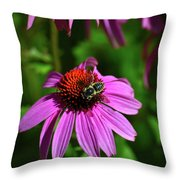 Bee Taking A Rest Throw Pillow