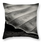 Beech Leaf Detail #1 Throw Pillow