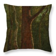 Beech Tree Throw Pillow