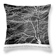 Beech Tree Branches, Light And Shadow Throw Pillow