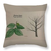 Beech Tree Id Throw Pillow