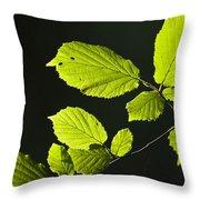 Beech Twig Detail Throw Pillow