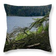 Beecraigs Loch. Throw Pillow