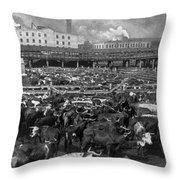 Beef Industry, C1903 Throw Pillow