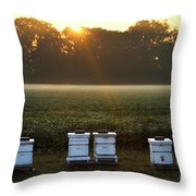 Beehives At Sunrise Throw Pillow