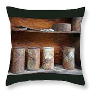Beer Cans On Shelf Throw Pillow