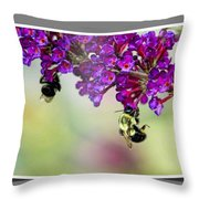 Bees On Butterfly Bush Framed Throw Pillow