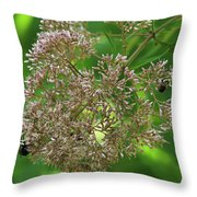 Bees On Joe-pyed Weed Throw Pillow