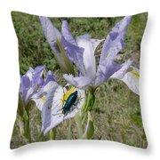 Beetle On Iris Throw Pillow