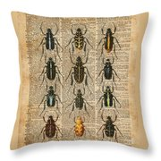 Beetles Bugs Zoology Illustration Vintage Dictionary Art Throw Pillow