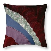 Beets' Waves Throw Pillow