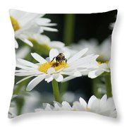 Beezy Day Ahead Throw Pillow