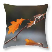 Before Flying Away Throw Pillow