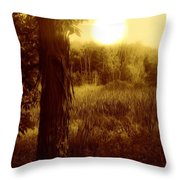 Before It Is Gone Throw Pillow