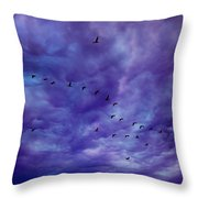 Before It Storms Throw Pillow