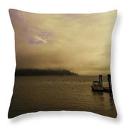 Before It's Gone  Throw Pillow