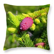Before Spring Ends Throw Pillow