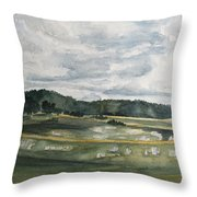 Before The Afternoon Shower Throw Pillow