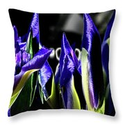 Before The Bloom Throw Pillow