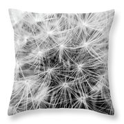 Before The Breeze Throw Pillow