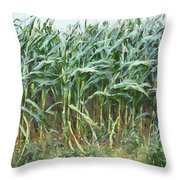 Before The Harvest Throw Pillow