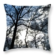 Before The Rain 2 Throw Pillow